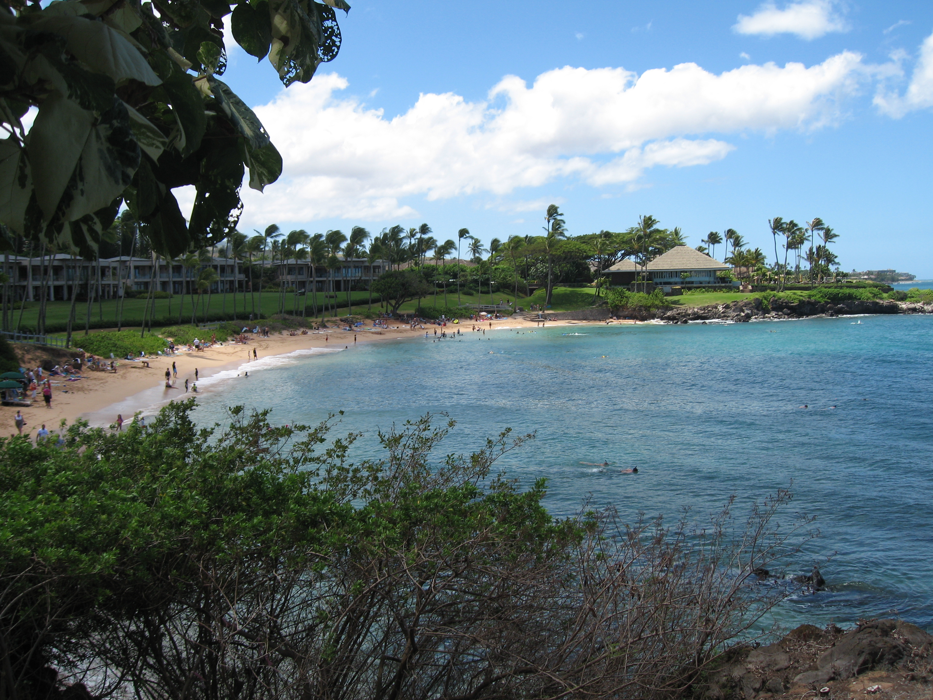 Maui Travel Deals