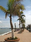 MALECON, PUERTA VALLARTA, TRAVEL DEALS